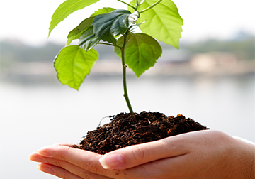 Endless Life Force growth Self Improvement